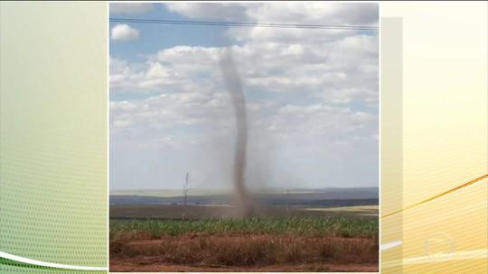 'Redemoinho' de vento se forma em lavoura e é registrado por cinegrafista em MT; veja vídeo