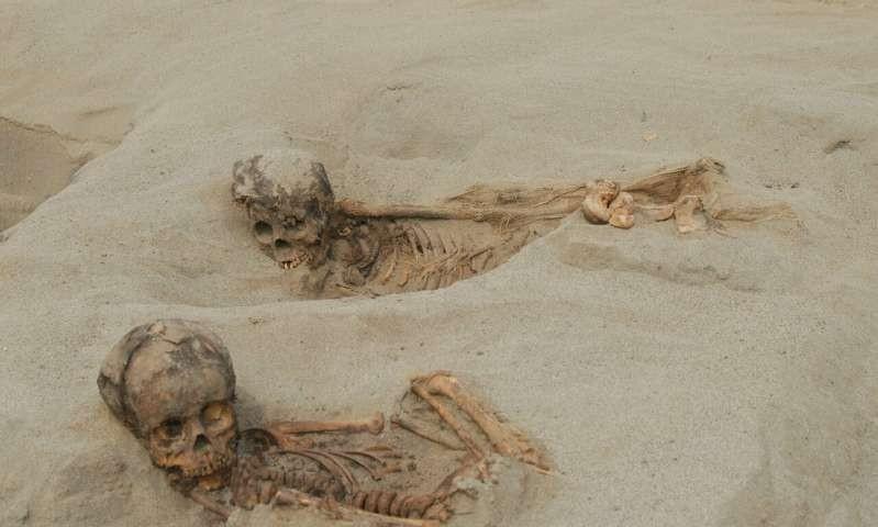 Restos de crianças sacrificadas em ritual de cultura antiga no Peru (Foto: Reprodução/John Verano)