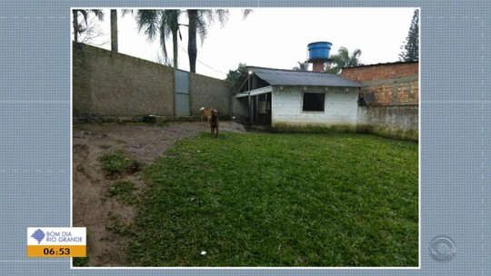Zeladora de sítio morre após ser atacada por cachorros em Viamão