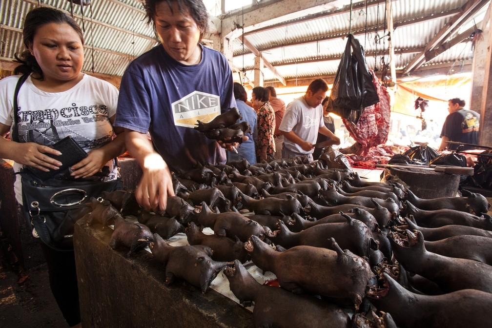 Pessoas compram morcegos em um mercado em Tomohon, na Indonésia, em foto de arquivo de 2014 — Foto: Michel Gunther/Biosphoto via AFP