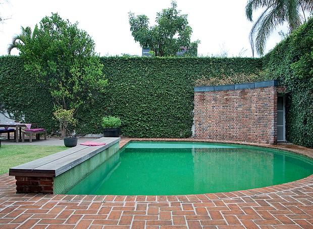 O muro tomado pela unha-de-gato inspirou a escolha da cor da piscina, revestida por pastilhas de vidro verdes. Casa da designer Vera Cortez (Foto: Célia Weiss/Casa e Jardim)