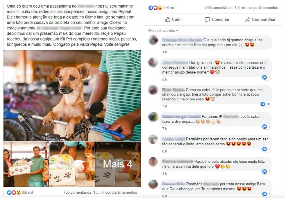 Mercado frequentado por dono e cãozinho postou imagem em rede social e rendeu comentários e compartilhamentos — Foto: Facebook/ Reprodução