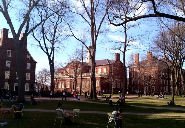 Universidade de Harvard (Foto: Barbara Bigarelli)
