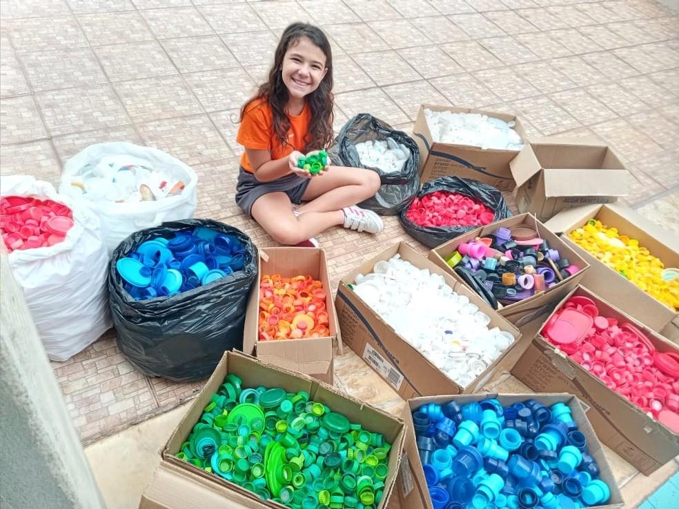 Alunos de Petrópolis recolhem 90 mil tampinhas plásticas que serão destinadas a castração de animais de rua — Foto: Divulgação/ Firjan SESI