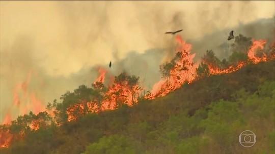Incêndio na Serra da Bocaina destrói área de 1600 campos de futebol