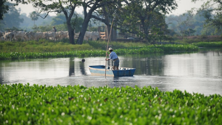 pantanal (Foto: Ernesto de Souza/Ed. Globo)