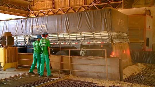 Cooperativas registram faturamento de R$ 43 bilhões em 2017 no Rio Grande do Sul