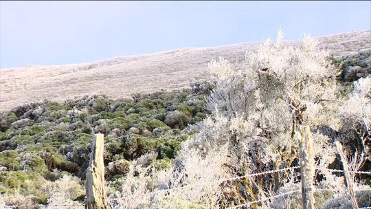 Frio segue intenso com registro de geada e mínima chega a -6,6°C em SC; FOTOS