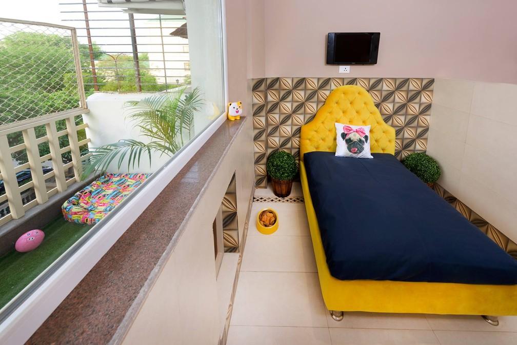 Quarto para os hóspedes de hotel de luxo para cães na Índia (Foto: Critterati/Divulgação)