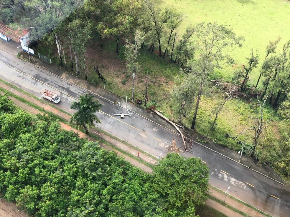 Poste caiu na Avenida Antônio Francisco Lisboa, na Região da Pampulha, em BH. — Foto: Danilo Girundi/TV Globo