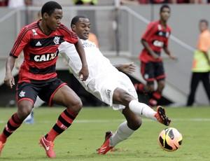 Santos x Flamengo (Foto: Jorge William / Agência O Globo)