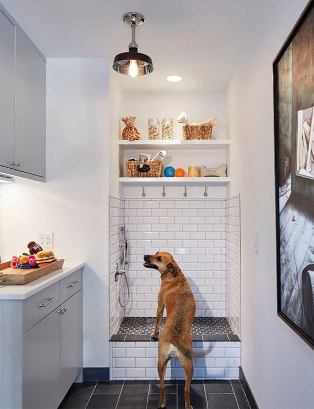 Dog shower: construa o espaço em imóveis pequenos! (Foto: Pinterest/Reprodução)