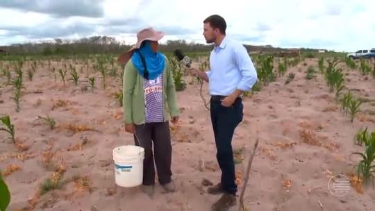 Mesmo com as chuvas, cidades do Piauí ainda sofrem com a estiagem