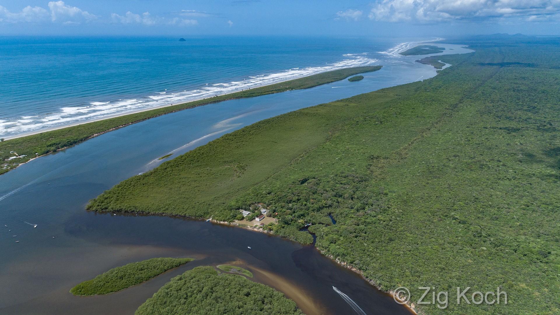 Documentários mostram imagens de área de Mata Atlântica preservada; Paraná concentra boa parte do sistema