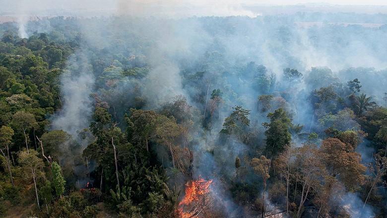 Reportagem de GLOBO RURAL revela como um grupo formado pelo WhatsApp planejou incêndios em Novo Progresso, no Pará (Foto: Emiliano Capozoli)