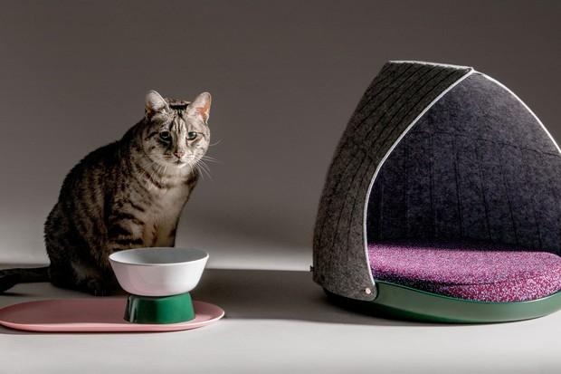 Agência de design cria mobiliário para gatos com peças adaptáveis