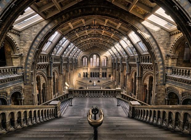 Museu de História Natural, em Londres (Foto: Reprodução/ Medium)