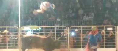 Touro arremessa salva-vidas para fora de arena em SP; veja (Ney Costa/Arquivo pessoal)