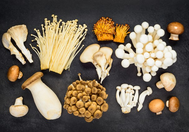 Diferent Types of Edible Mushrooms in Top View (Foto: Getty Images/iStockphoto)