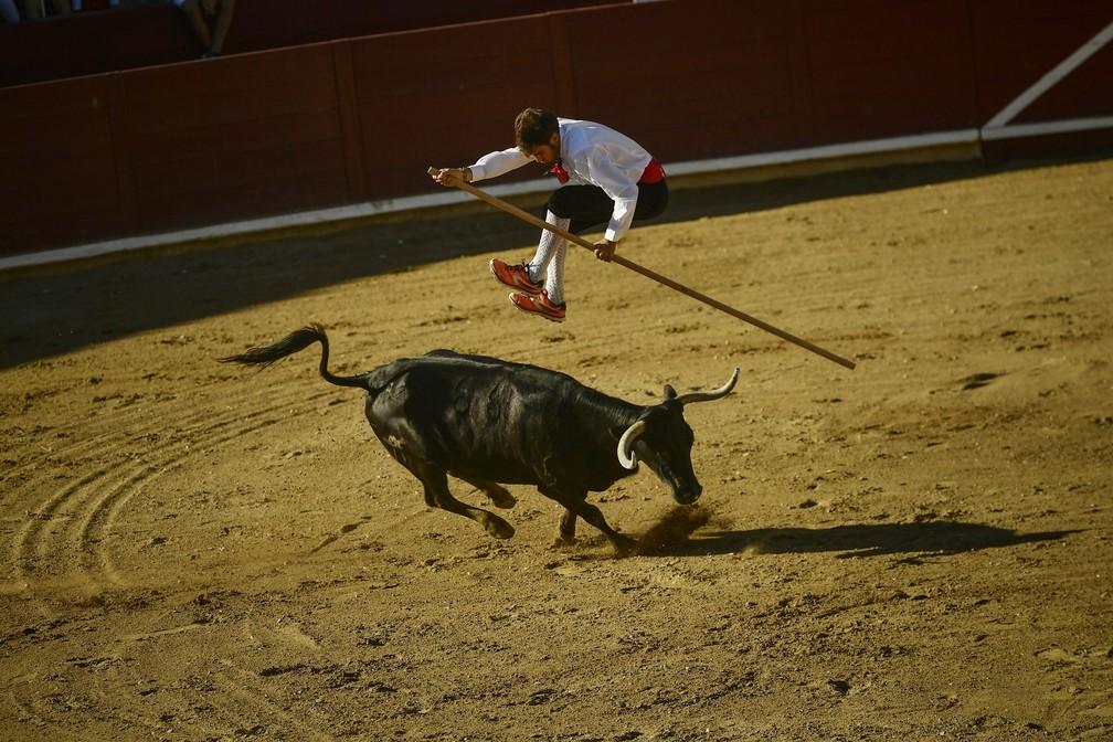 8 de agosto - Um toureiro salta sobre um touro durante a 'Corrida Goyesca' em Estella, no norte da Espanha. Os participantes do evento utilizam um antigo método de touradas no ringue onde o participante, vestido em roupas espanholas típicas do século 18, salta sobre o touro e o animal não é morto (Foto: Alvaro Barrientos/AP)