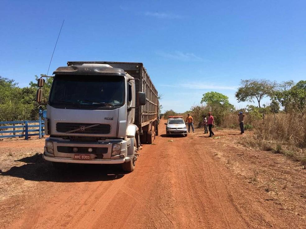 Ao todo, 24 animais haviam sido levados de uma fazenda (Foto: SSP/Divulgação )
