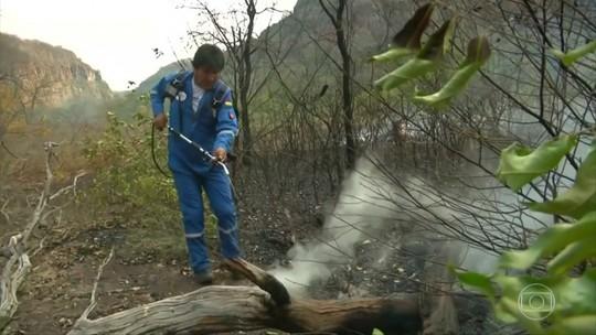 Evo Morales se junta a bombeiros e voluntários para tentar apagar fogo na Amazônia