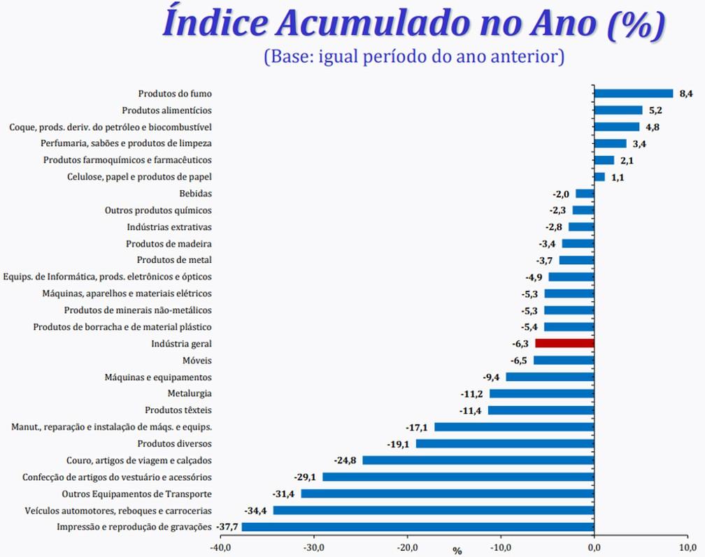 Dos 26 ramos da indústria pesquisados pelo IBGE, apenas 6 acumulam alta em 2020 — Foto: Divulgação/IBGE