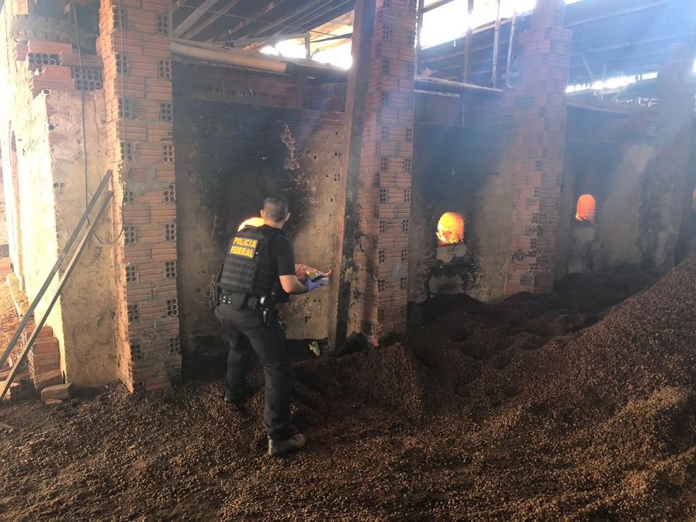 -  Polícia Federal não informou a quantidade de drogas incinerada  Foto: Polícia Federal/Divulgação
