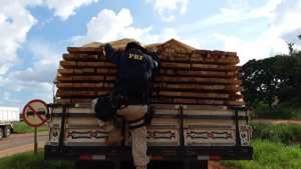 Mais 6 mil metros cúbicos de madeira foram apreendidos — Foto: PRF-MT