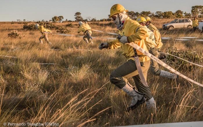 ICMBio abre processo seletivo para chefe de esquadrão e cadastro de reserva para brigadista no Acre