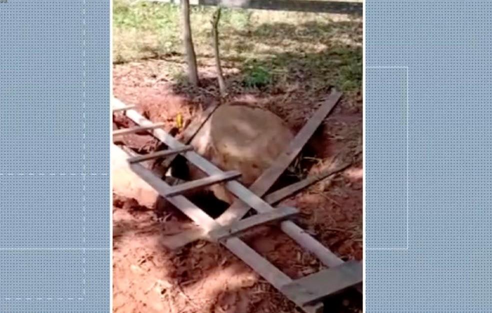 Poço onde bebê de seis meses foi jogada pelos pais em MT — Foto: Arquivo pessoal