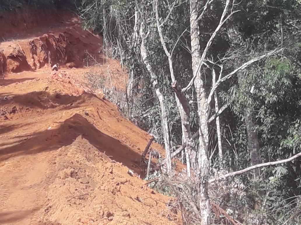 Polícia encontra área de 2 mil m² desmatada e árvores nativas cortadas em Petrópolis, no RJ