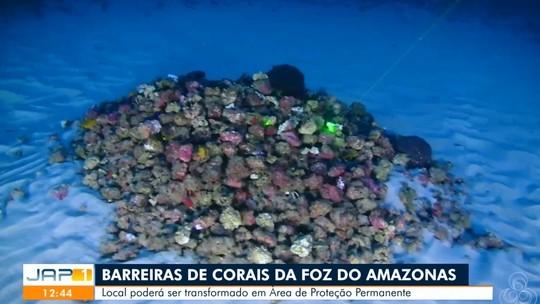Giovanna Lancellotti embarca para Guiana Francesa e defende luta ambiental 'apartidária'