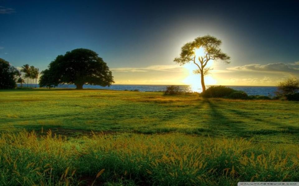 Papel De Parede Landscape Nature Download Techtudo