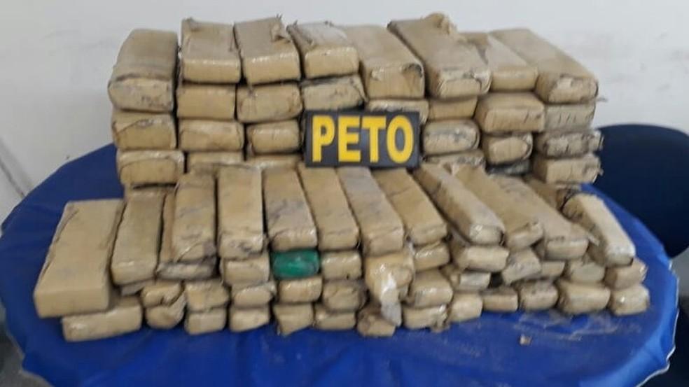 Cento e vinte quilos de maconha foram encontrados enterrados na localidade de Mutirão de Abrantes, em Camaçari — Foto: SSP/ Divulgação