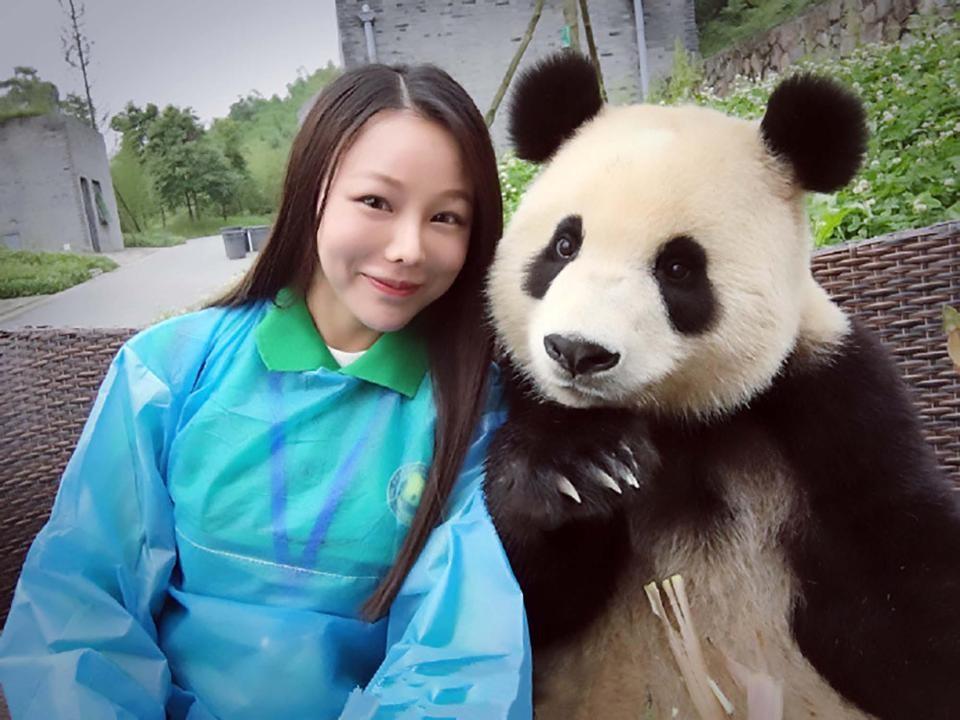 Mais uma pose do panda