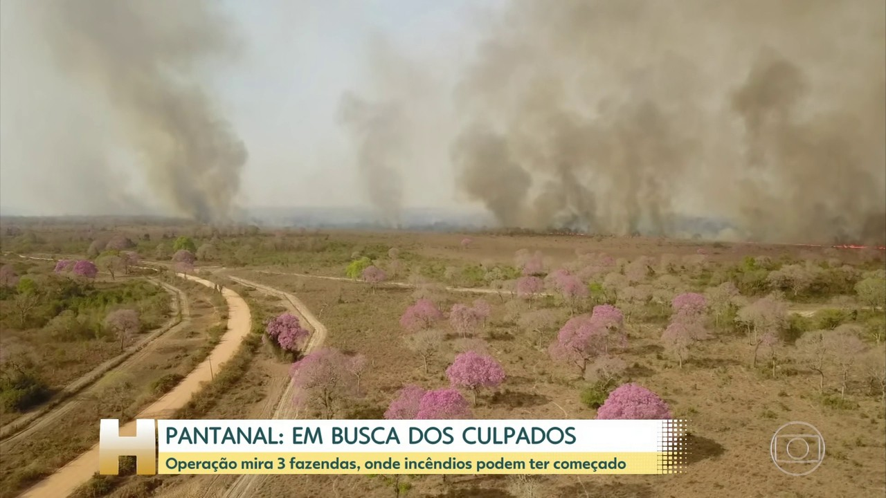 Policiais cumprem mandos em 3 fazendas de Mato Grosso