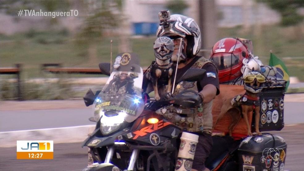 Motoqueiro viaja com duas cadelinhas pelo Brasil — Foto: Reprodução/TV Anhanguera