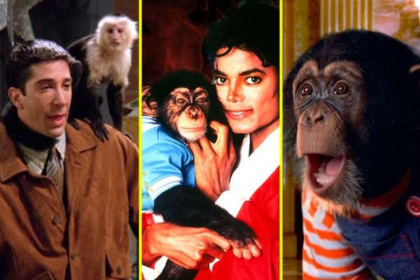 Primatas famosos do showbiz (Foto: reprodução)