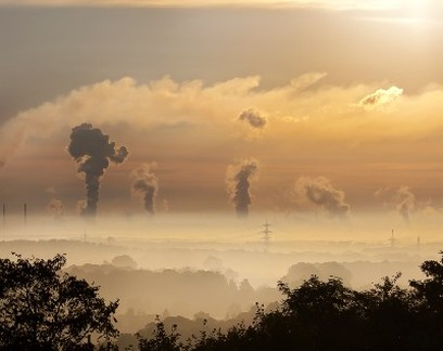 Empreendedor cria purificador de ar cujos resíduos poluentes se transformam em revestimentos