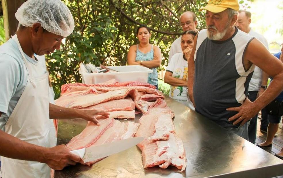 Quilo do Pirarucu é vendido a R$ 8,00 em Jaru e R$ 7,40 em Rolim de Moura  (Foto: Dirce Quintino/FAS)