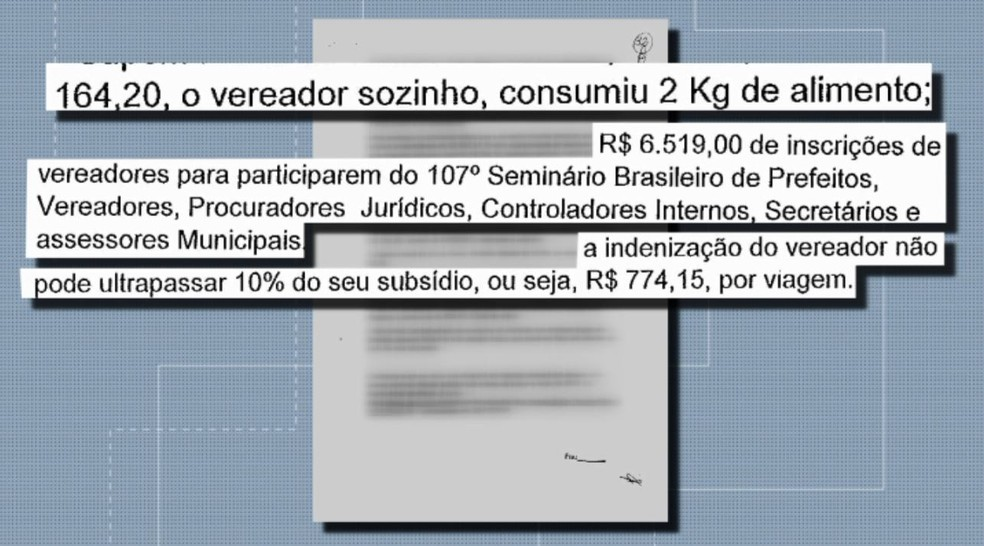Onze de 17 vereadores, além de servidores do setor administrativo, são citados no documento — Foto: Reprodução/EPTV