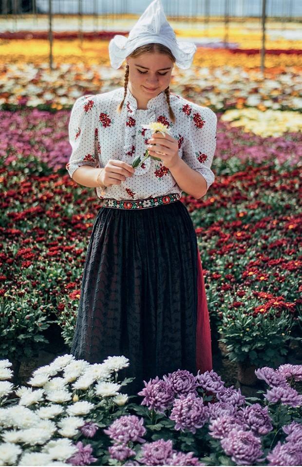 Os campos de flores podem ser visitados o ano todo (Foto: Divulgação)