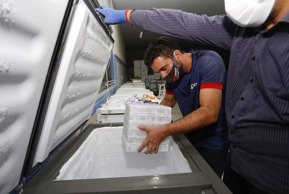 Ceará recebe mais 97 mil doses de vacinas da Pfizer contra a Covid-19. — Foto: Divulgação/Camilo Santana