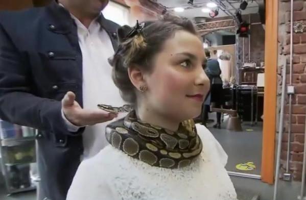 Cliente é massageada por cobra em salão em Dresden
