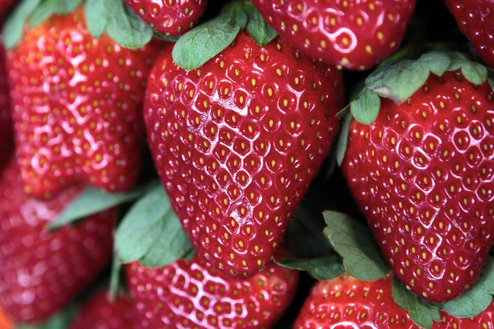 Pesquisadoras levaram em conta, na criação do produto, o desejo de pacientes por frutas — Foto: Associação do Morango