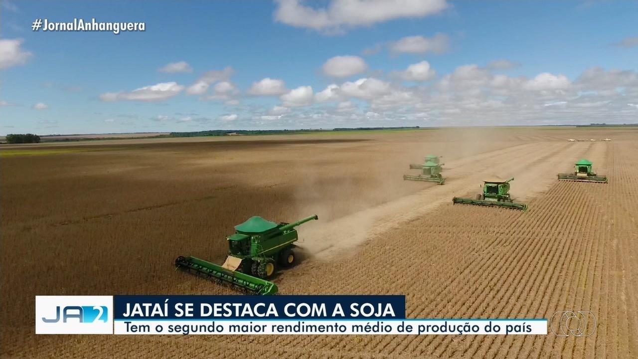 Jataí tem a segunda maior produção de soja do país, diz IBGE
