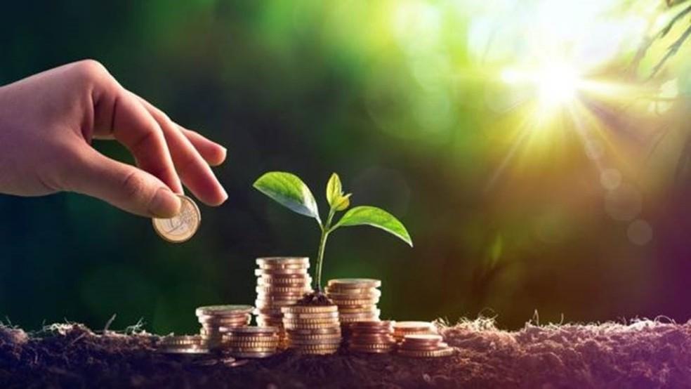 Alguns pesquisadores têm se especializado no cálculo, em dinheiro, dos serviços oferecidos pela natureza  — Foto: Getty Images via BBC