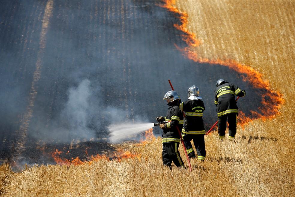 Bombeiros combatem um incêndio em um campo de trigo em chamas durante a temporada de colheita em Aubencheul-au-Bac, na França, em 21 de julho — Foto: Pascal Rossignol/Reuters