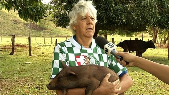 Torcedor que levou porco ao jogo entre Atlético-GO e Palmeiras nega maus-tratos